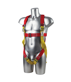 Portwest 2-Point Harness Plus