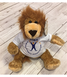 DSA UK Arthur the Lion